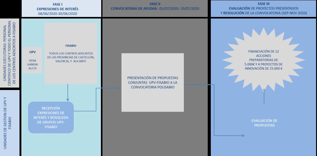 Fases Programa UPV FISABIO
